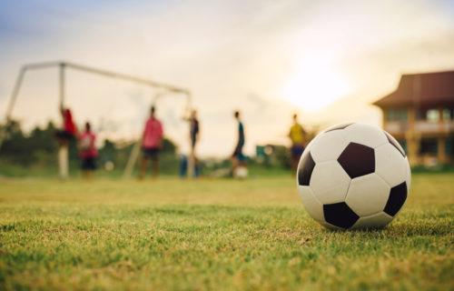 pro move - Bewegung und Sport