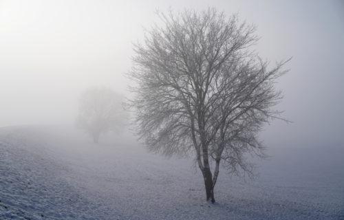 Gegen das Grau im Alltag – Herbst-Winterdepression bekämpfen