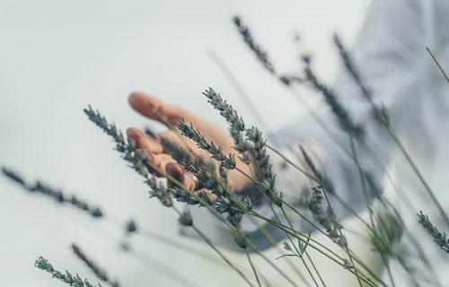 Achtsamkeit – Den Alltag bewusst erleben