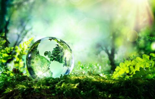 Die Einflüsse der Biodiversität auf das Wohlbefinden